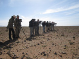 The group in action - Birding in the steppes