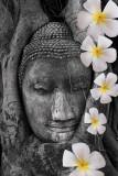 Ayuthaya Buddha