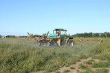 Spraying Fungicide on the grass