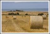 Haybales on the cliff edge!
