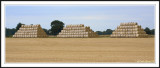 Norfolk Pyramids!