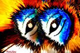 26 - Paranoid Eyes