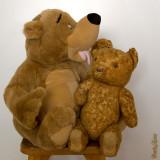 9 - Bear