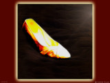 December 16th: Cinderella's Slipper