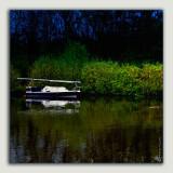 May 7th: Nightboat
