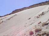 Jeremy Musintouchit Sand Dune East Desert Ut 3-30-02.jpg