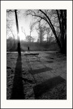 Les shadows de Vincennes (3)
