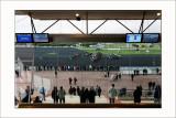 Courses à Vincennes Départ de la 5