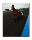 Courses à Vincennes Le 6
