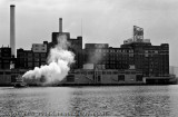 Domino Sugar Plant II