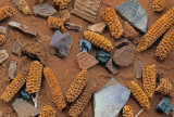 Maize cobs, potsherds, bones, and rocks, Road Canyon Ruin, Cedar Mesa, UT
