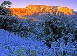 (SED8) Dry Creek Winter, Sedona, AZ