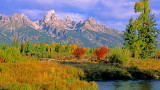(CR8) Otter Tail Meadow, Tetons, WY