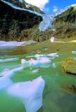 (AG28) Angel Glacier, Jasper National Park, Alberta, Canada