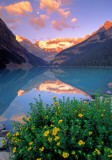 (CR9) Lake Louise, Banff National Park, Canada