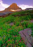 (AG25) Reynolds Peak, a horn, Glacier N. P., MT