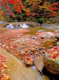 (NE16) Swift River, NH