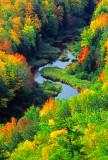 (MW13) Carp River, Ottawa N.F., MI