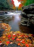 (MW24) Cedar River,  MI