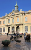 Svenska Akademien & Nobel Museum
