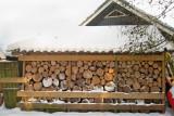 Schier wood