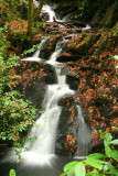 Inistioge waterfall 1.jpg