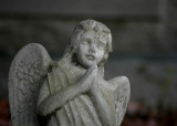 angel 130