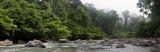 Danum River Panorama