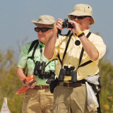 The Great Florida Birding Trail