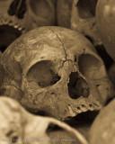 ds20071110-0153-1_Skull.jpg