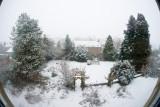 snow16mm.jpg