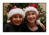 Christmas tree, December 2009