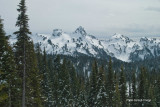 Tatoosh Range from Paradise_02.jpg