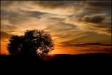 Sunset & Sunrise Gallery