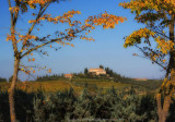 Around San Gimignano
