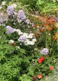 August Garden(2)