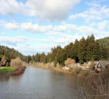 The Russian River, Sonoma's oldest and wisest resident