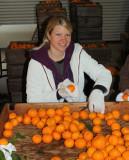 Glennda's daughter Kimberly Reese at the mandarin sorting and cleaning station