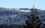 The Sierra, Butte County