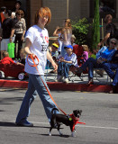 Walking a dog in support of the Butte Humane Society