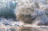 A Frosty Morning.jpg