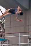 20080726 En Route vers Pékin - Equipe Olympique de nage synchronisée  de Plongeon 0045.jpg