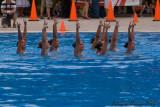20080726 En Route vers Pékin - Equipe Olympique de nage synchronisée  de Plongeon 0070.jpg