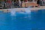 20080726 En Route vers Pékin - Equipe Olympique de nage synchronisée  de Plongeon 0157.jpg
