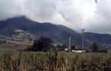 St. Kitts-04.jpg