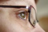 eye 20080324018