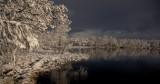 Nature 06.jpg