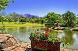 DSC_4708_ The Water Garden