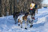 Iditarod37_Anc_07Mar2009_ 047.JPG