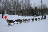 Iditarod37_Willow_08Mar2009_ 155.JPG